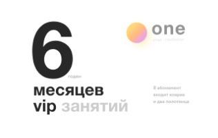 6 месяцев занятий<br> VIP за 50 000 р.